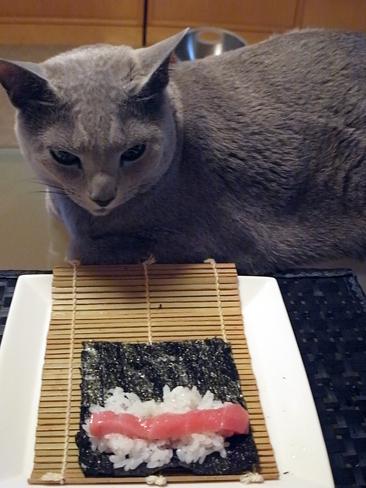 手巻き寿司.jpg